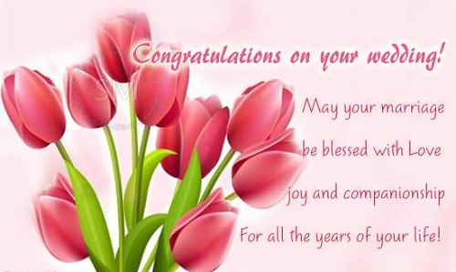 Wedding Wishes Congratulations.Top Best Happy Wedding Wishes Greetings And Images Picsmine
