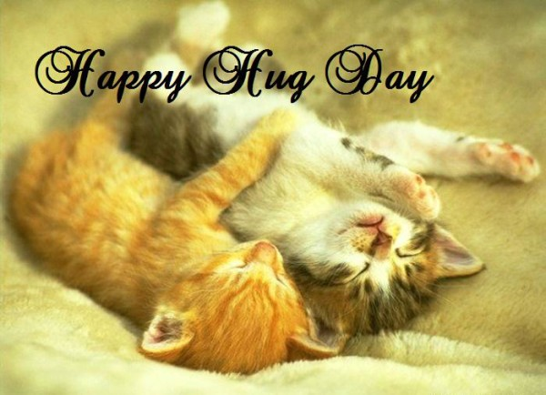 Cute Cat Wishes Happy Hug Day Image