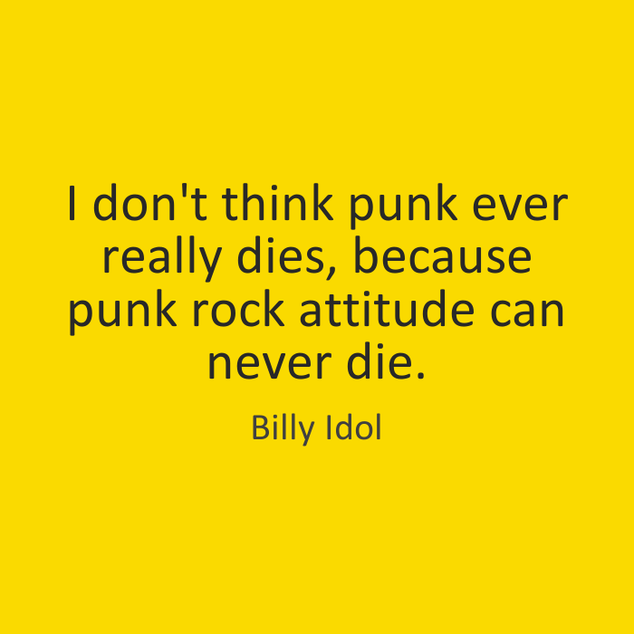 Die Quotes I don't think punk