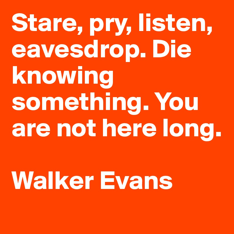 Die Quotes Stare, pry, listen, eavesdrop