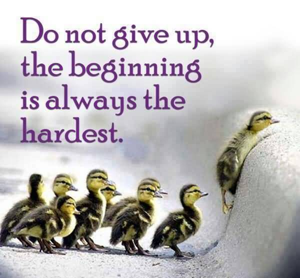 Do Quotes Do not give up the beginning is always the hardest