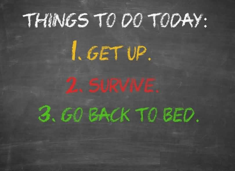Do Sayings Things to do today get up survive go back to bed