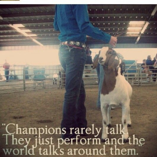 FFA Quotes Champions rarely talk they just perform and the world talks around them