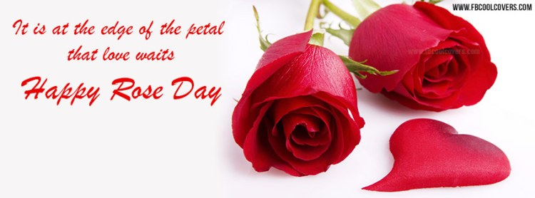 Facebook Cover Picture Happy Rose Day