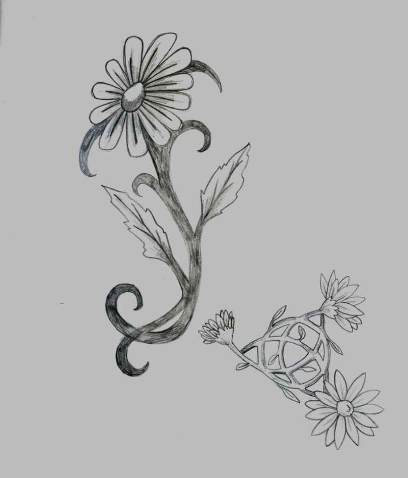 Famous Black Color Ink More Daisy Tattoo Designs For Girls