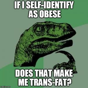 Fat Quotes If i self identify as obese does that make me trans fat