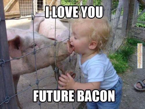 Funny Love Memes I love you future bacon