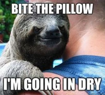 Funny Sloth Whisper Memes Sloth Meme Whisper Bite the pillow i'm going in dry