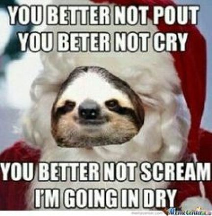 Funny Sloth Whisper Memes You better noy pout you better not cry you better not scream