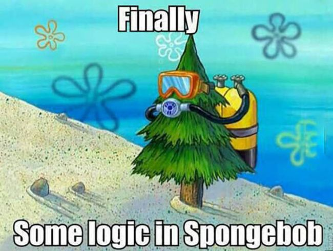 Funny Spongebob Memes Finally some logic in spongebob Pictures