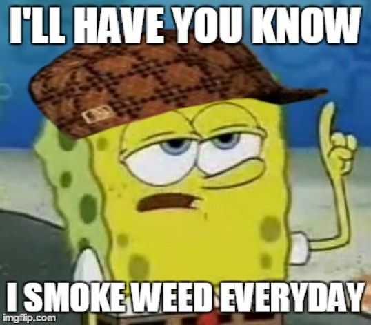 Funny Spongebob Memes I'll have you know i smoke weed everyday