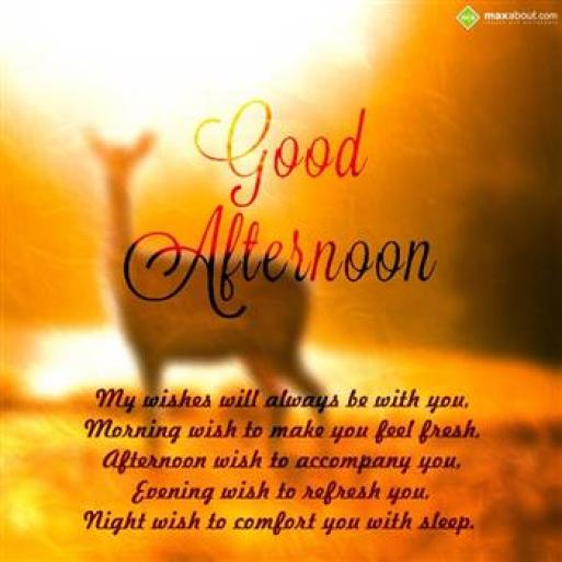 Good Afternoon Wishes Message Image