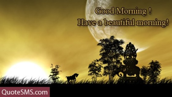 Good Morning Have A Beautiful Morning Wishes Image