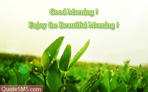 Good Morning Wishes Enjoy The Beautiful Morning