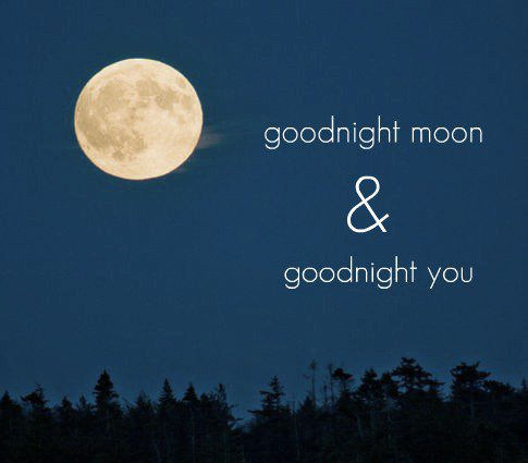 Goodnight Moon Quotes Sayings 1