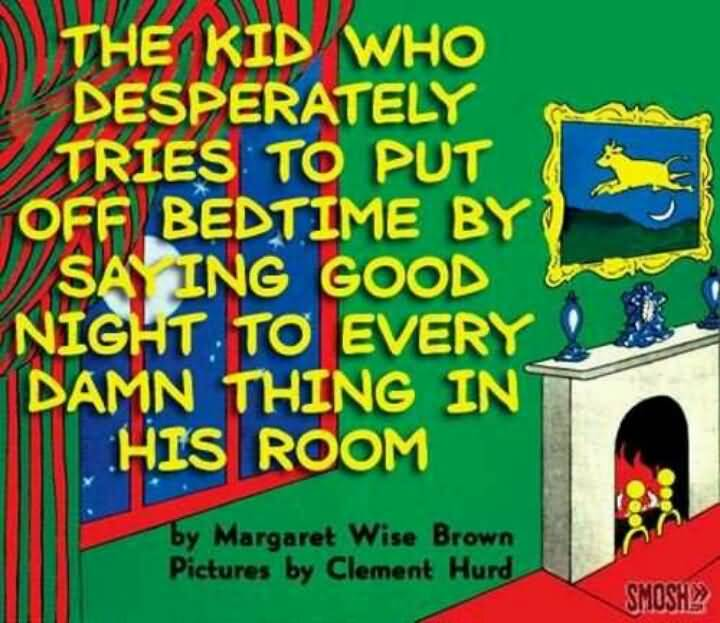 Goodnight Moon Quotes The kid who desperately tries to put off bedtime by saying good night to every