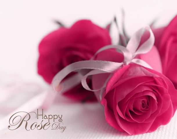 Happy Rose Day Greeting Picture