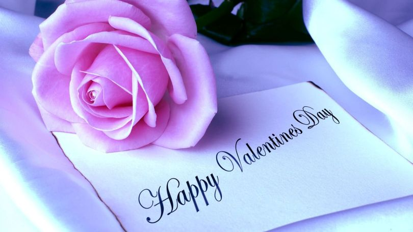 Happy Valentine Day Pink Rose With Greetings Card Image