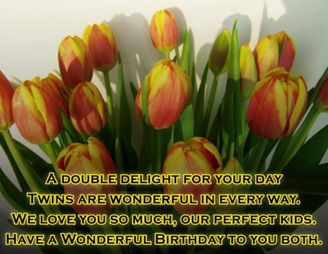 Have A Wonderful Birthday To You Both Wishes Message