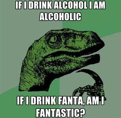 Hilarious WTF Meme If I Drink Alcohol I Am Alcoholic If I Drink Fanta Am I Fantastic