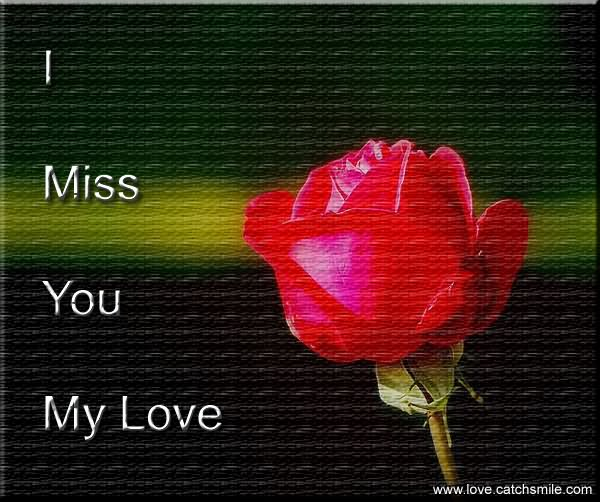 I Miss You My Love Rose Flower Wallpaper