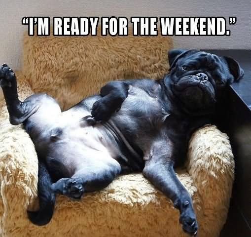 I'm Ready For The Weekend Funny Lazy Memes