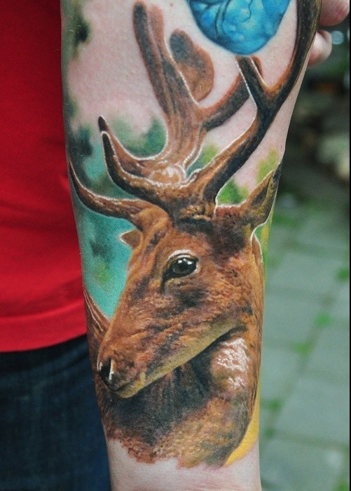 Impressive Blue Brown And Green Color Ink Deer Tattoo For Boys