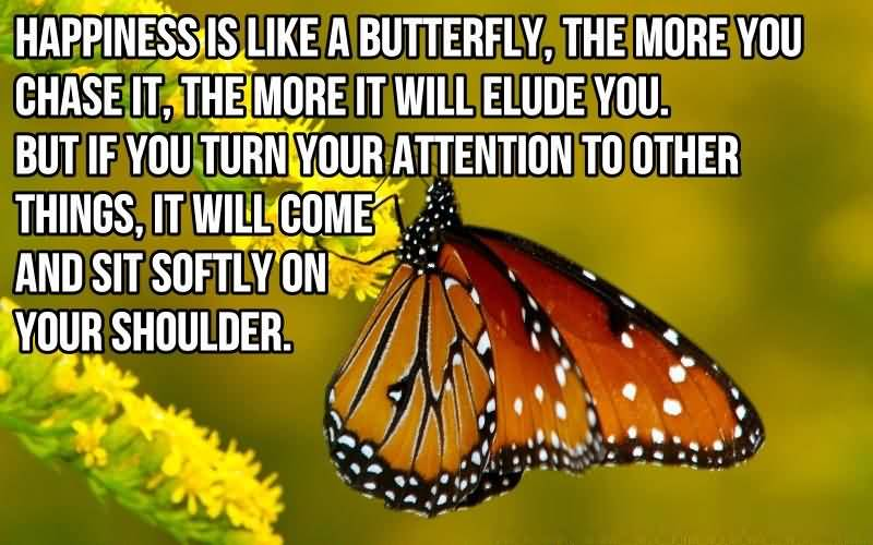 Inspirational Happiness Sayings Happiness is like a butterfly, the more you chase it , the more it will elude you