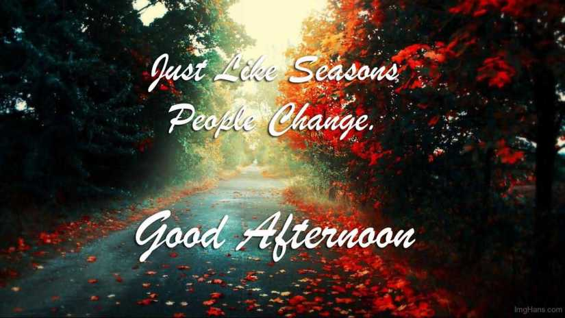 Lovely Good Afternoon Wishes Image