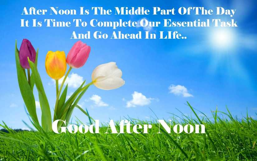 Message For Good Afternoon Friends
