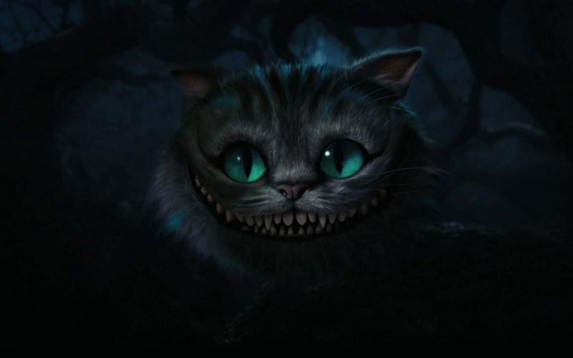 Most Amazing Eyes Beautiful And Funny Cat 4K Wallpaper