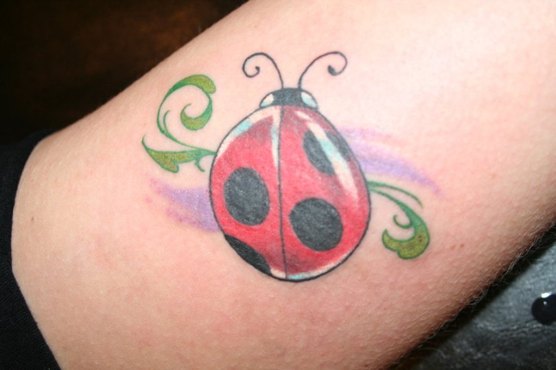 Most Beautiful Green Black And Red Color Ink Lady Bug Tattoo Design On Leg For Girls