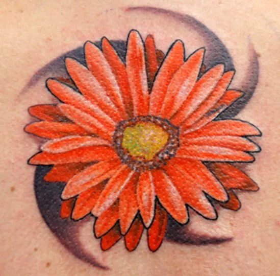 Passionate Yellow Red And Black Color Ink Gerber Daisy Tattoo Picture For Girls