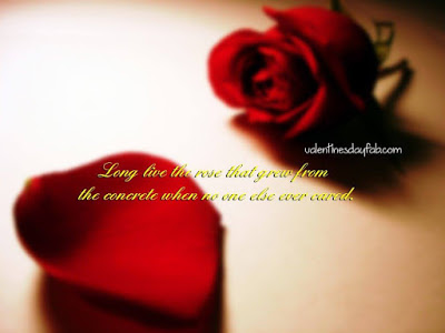 Rose Day Lovely Quotes Image