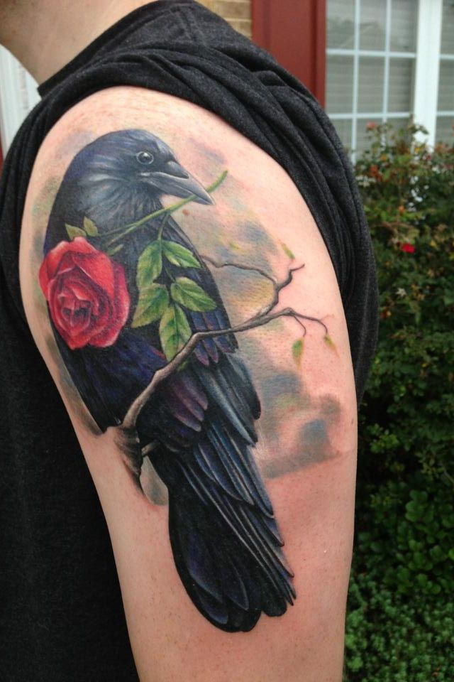 Superb Green Red And Black Color Ink Crow With Rose Tattoo On Shoulder For Boys