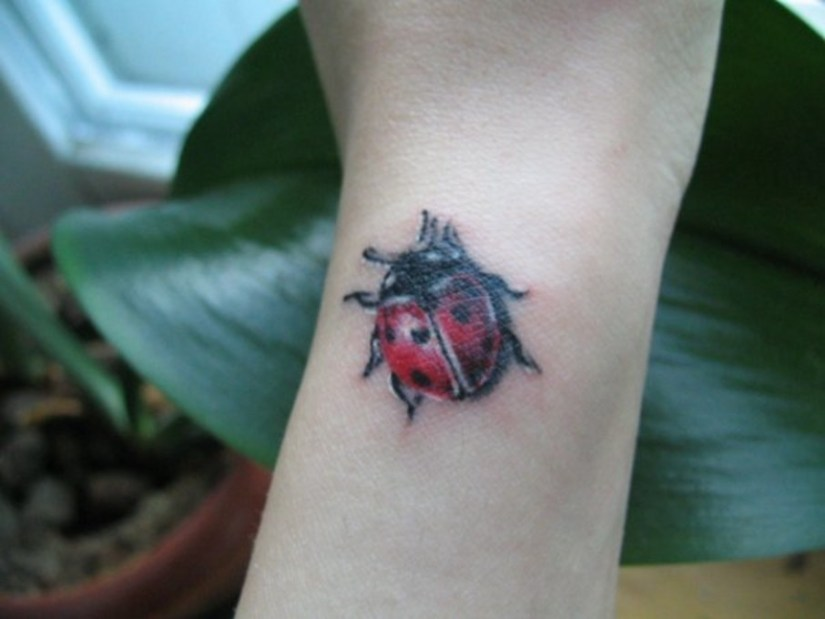 Sweet Black And Red Color Ink Tiny Size Lady Bug Tattoo On Arm For Girls