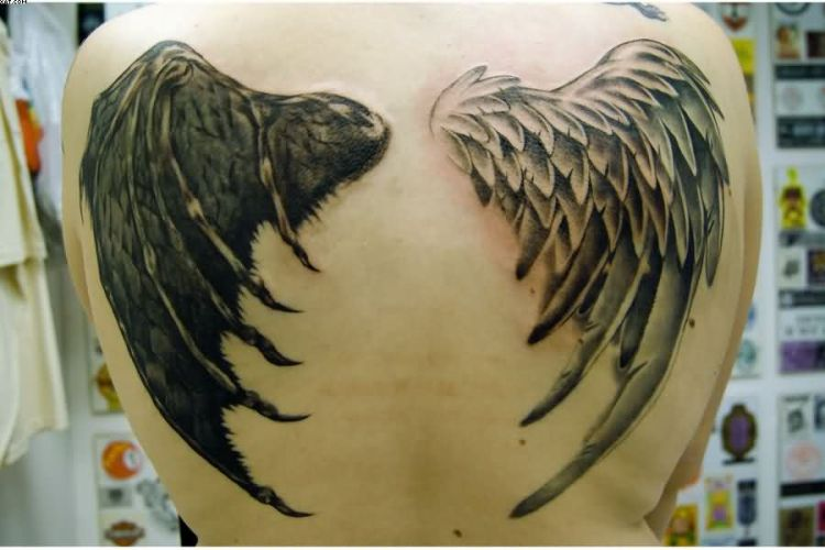 Wing Tattoo On Back Of A Bird