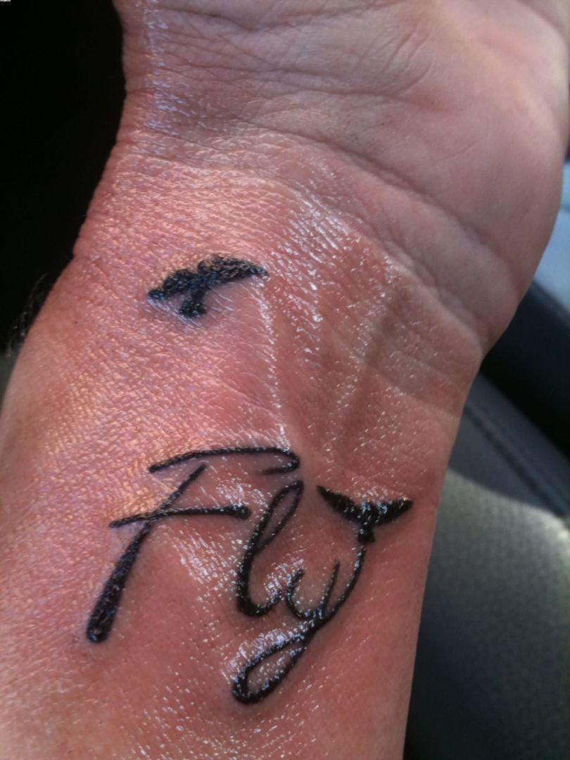 Wonderful Fly With Two Bird Tattoo On Wrist With Black Ink