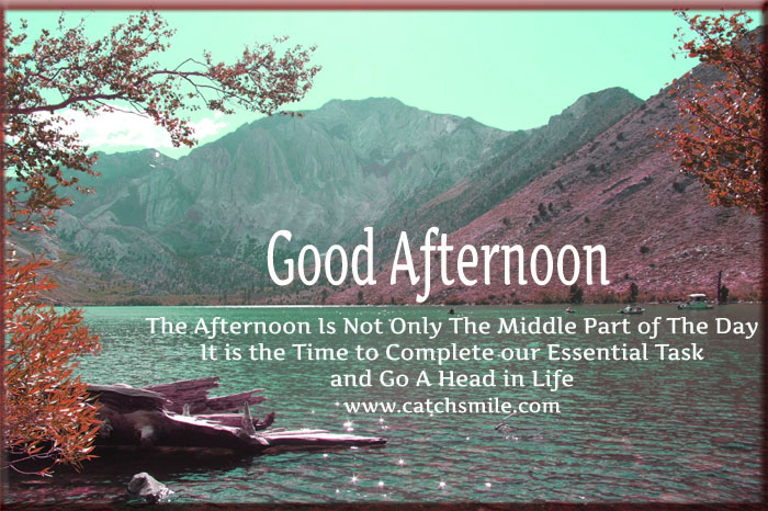 Good Afternoon Picture Quotes: 54 Best Good Afternoon Wishes Image & Quotes Pictures