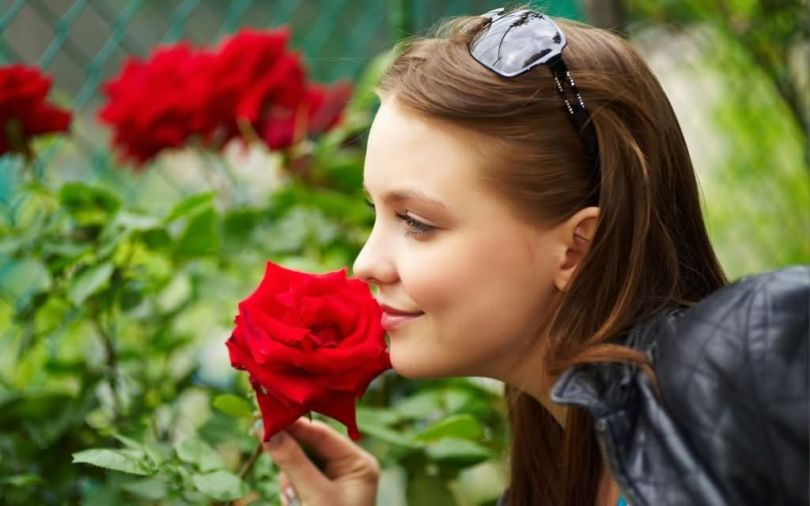 Wonderful Happy Rose For Girlfriend Greeting Image