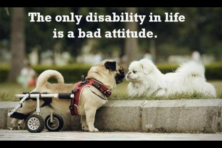 Short Attitude Quotes  029.
