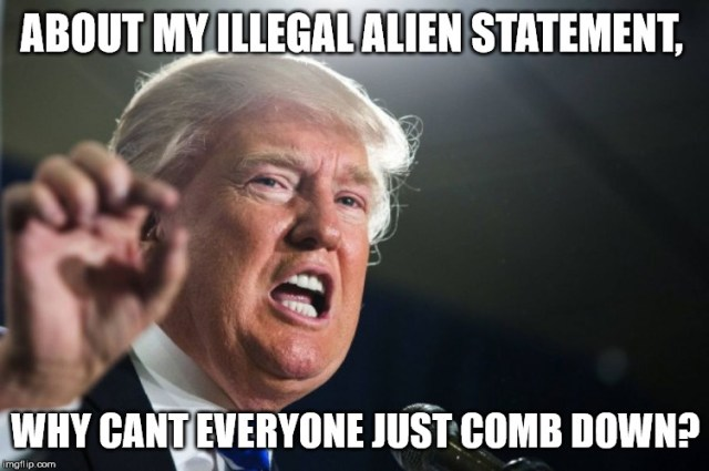 About My Illegal Alien Statement Why Cant Everyone Just Comb Down Donald Trump Meme