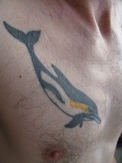 Amazing Dolphin Tattoo On Chest For Boys