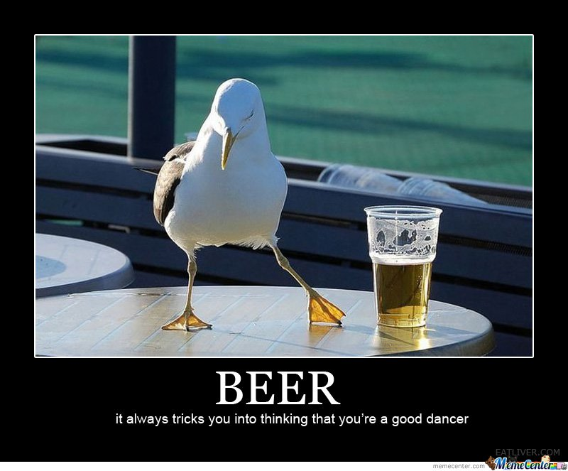 Beer Meme Beer It Always Tricks You Into Thinking That You're