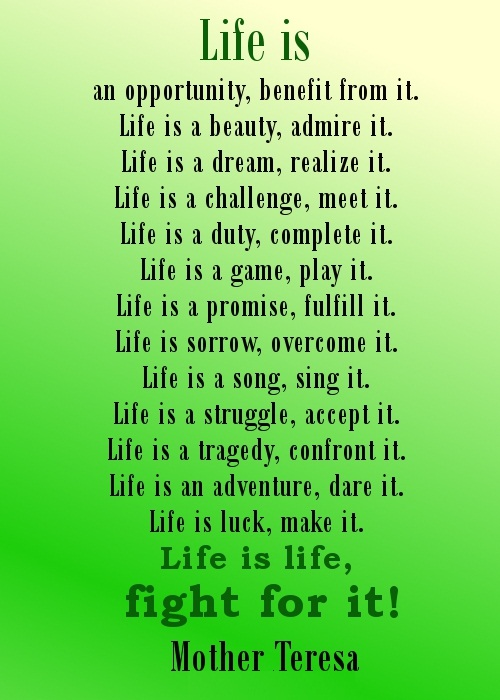 Best Life Quotes Life is an oppotunity,benifit from it