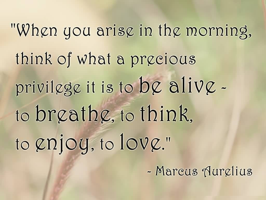 Morning Life Quotes Best Life Quotes When You Arise In The Morning Think Of What A