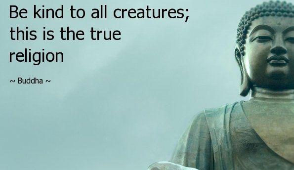 Buddha Quotes Sayings 23