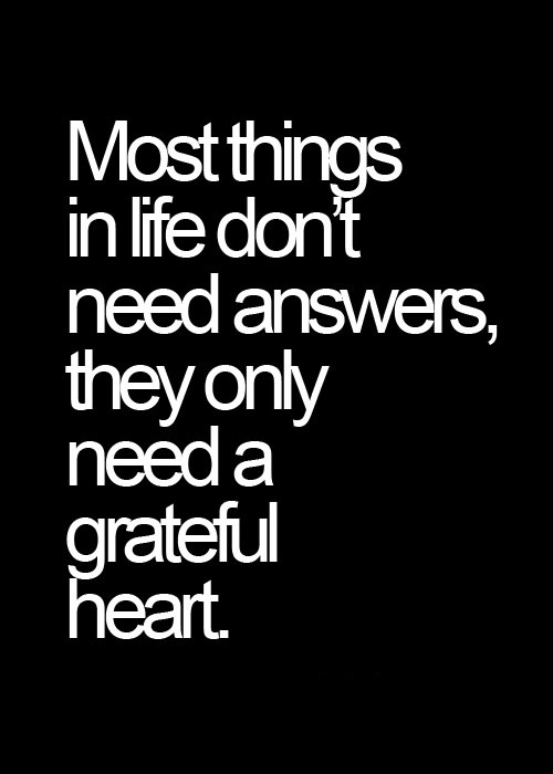 Cute Life Quotes Most things in life don't need answers they only need a grateful heart