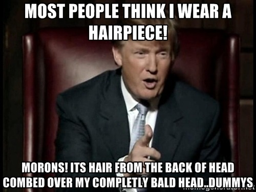 Donald Trump Funny Meme Most People Think I Wear A Hairpiece