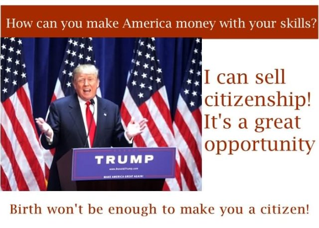 Donald Trump Memes I Can Sell Citizenship Its A Great Opportunity